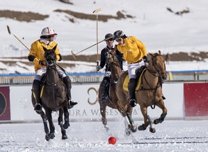 Taxis Snow Polo